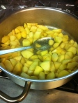 Chop apples & quince, toss in butter and sugar on stove  a couple of miutes.